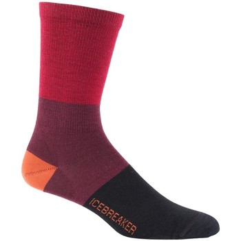 Accessoires Homme Chaussettes Icebreaker M Lifestyle Ul Crew Rugby Stripe Rouge