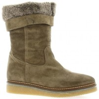 Chaussures Femme Boots Alpe Boots cuir velours Taupe