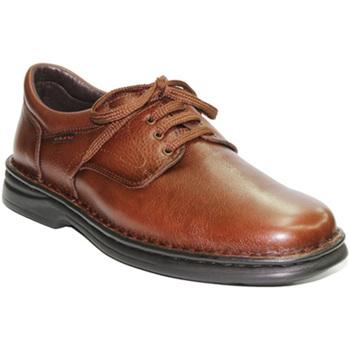 Chaussures Homme Mocassins Tolino  Lacets de chaussures très résistant To marrón