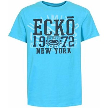 Vêtements Homme T-shirts manches courtes Ecko T-Shirt UNLTD Big Block Radius River Blue Limited edition Gris