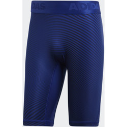 Vêtements Homme Shorts / Bermudas adidas Performance Cuissard Alphaskin Sport Graphic Multicolore