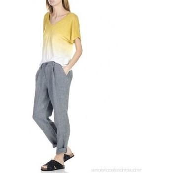 Vêtements Femme T-shirts manches courtes Harris Wilson CUPCAKE Multicolore