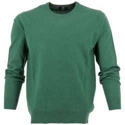 Vêtements Homme Pulls Real Cashmere Pull col rond  - IUS108136-VERT Vert