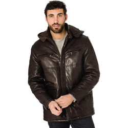 Vêtements Homme Vestes en cuir / synthétiques Daytona 73 JONES SHEEP AOSTA R/BROWN Marron