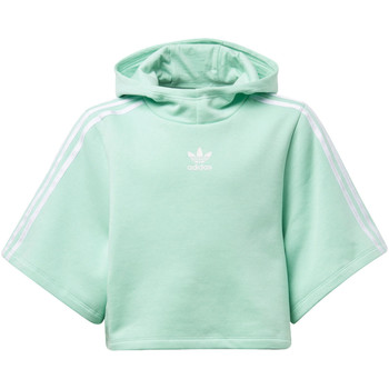 Vêtements Fille Vestes de survêtement adidas Originals T-shirt GRPHC Hooded Cropped Blanc