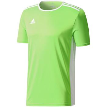 Vêtements Homme T-shirts manches courtes adidas Originals Entrada 18 Jersey Grün