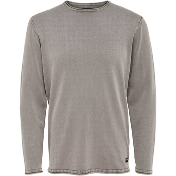 Vêtements Homme Pulls Only & Sons  22006806 Gris