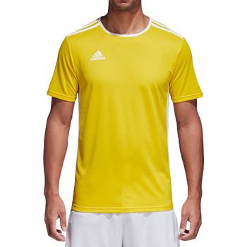 Vêtements Homme T-shirts manches courtes adidas Originals Entrada 18 Jersey Gelb