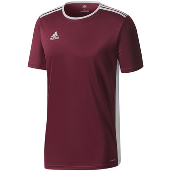 Vêtements Homme T-shirts manches courtes adidas Originals Entrada 18 Jersey Rot