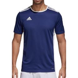 Vêtements Homme T-shirts manches courtes adidas Originals Entrada 18 Jersey Blau