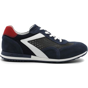 Chaussures Homme Baskets basses Nero Giardini SNEAKER P800241-207  0241 CHAUSSURES POUR HOMMES JEANS SPORT BLE BLU