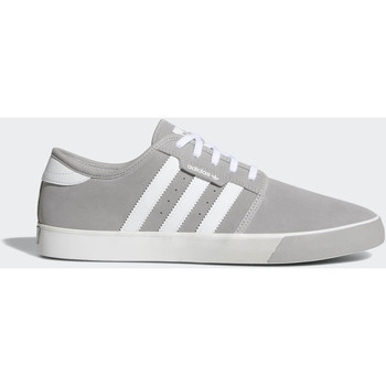 Chaussures Homme Baskets basses adidas Originals Chaussure Seeley Gris / Blanc