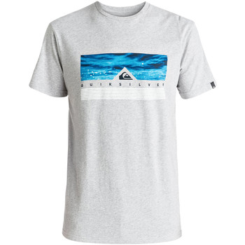 Vêtements Homme T-shirts manches courtes Quiksilver Jungle Box T-Shirt Mc Homme