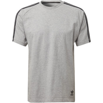 Vêtements Homme T-shirts manches courtes adidas Originals T-shirt Curated Gris
