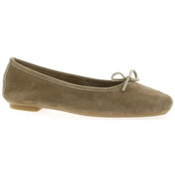 Chaussures Femme Ballerines / babies Reqins Ballerines cuir velours Taupe
