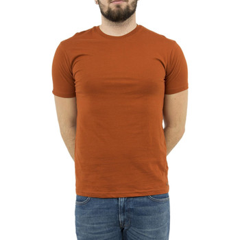 Vêtements Homme T-shirts manches courtes Lee Cooper tee shirt  003965 calvin orange orange