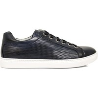Chaussures Homme Baskets basses Nero Giardini SNEAKER P800282-208  0282 CHAUSSURES HOMMES MER BLEU BLU