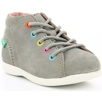 Chaussures Enfant Boots Kickers BABYSTAD Gris