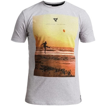 Vêtements Homme T-shirts manches courtes Rugby Division T-shirt TMC ENDLESS SUMMER Gris chiné