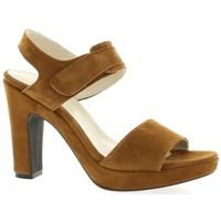 Chaussures Femme Sandales et Nu-pieds Pao Nu pieds cuir velours Camel