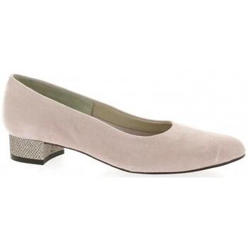 Chaussures Femme Escarpins Pao Escarpins cuir velours Poudré