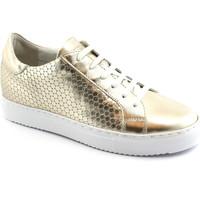 Chaussures Femme Baskets basses Grunland GRU-E18-SC3853-PL Oro