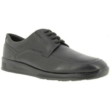 Chaussures Homme Derbies 24 Hrs 24 heures 10231 Noir Noir