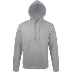 Vêtements Sweats Sols SLAM SPORT Gris