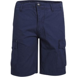 Vêtements Homme Shorts / Bermudas Minimum FABRICE Bleu Marine