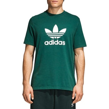 Vêtements Homme T-shirts manches courtes adidas Originals TREFOIL T-SHIRT VERDE UNIVERSITARIO Vert