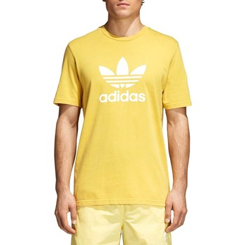 Vêtements Homme T-shirts manches courtes adidas Originals TREFOIL T-SHIRT AMARILLO Jaune
