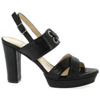Chaussures Femme Sandales et Nu-pieds Benoite C Nu pieds cuir python Noir
