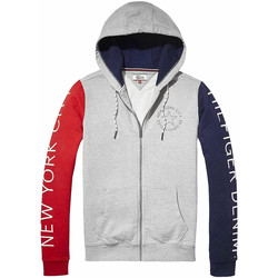 Vêtements Homme Sweats Tommy Hilfiger Dm0Dm03050 Sweat Zip Homme