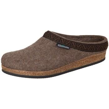 Chaussures Femme Chaussons Stegmann Brown Wollfilz