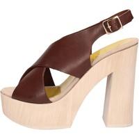 Chaussures Femme Sandales et Nu-pieds Suky Brand sandales marron cuir AC799 marron