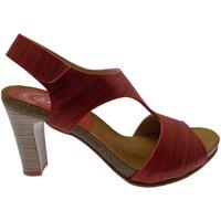 Chaussures Femme Sandales et Nu-pieds Calzaturificio Loren LOJ0833ne nero