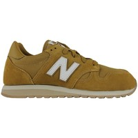 Chaussures Homme Running / trail New Balance u520bf Brown