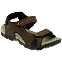 Chaussures Homme Sandales et Nu-pieds Lumberjack PALMER Sandales