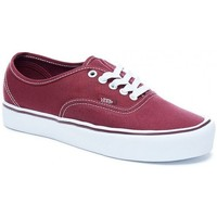 Chaussures Homme Baskets mode Vans Chaussures  U Authentic Lite - Canvas Port Royale / True White Rouge