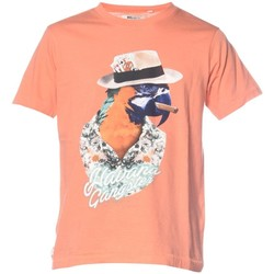 Vêtements Homme T-shirts manches courtes Deeluxe T-shirt print animalier Havana orange