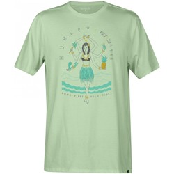 Vêtements Homme T-shirts manches courtes Hurley T-shirt  Hulightenment Vapor Green Vert Turquoise
