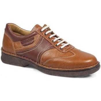 Chaussures Femme Ville basse Calzamedi Chaussures  Shark M 2151 MARRON