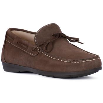 Chaussures Homme Mocassins Igi&co SCAMOSCIATO TORTORA Beige