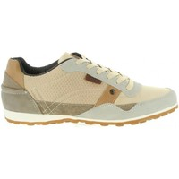 Chaussures Homme Baskets basses Lois Jeans 84003 Beige