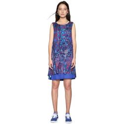 Vêtements Femme Robes courtes Desigual Robe Eric Bleu 18SWVKA9 19