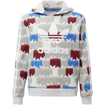 Vêtements Garçon Sweats adidas Originals Sweat-shirt à capuche GRPHC Multicolore / Gris / Blanc