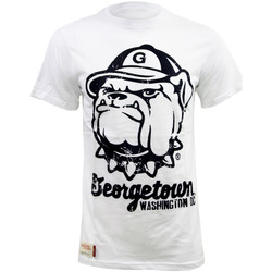 Vêtements Homme T-shirts manches courtes American Freshman JUNIPER TEE Tee Shirt Homme Georgetown University blancape01143