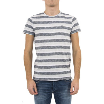 Vêtements Homme T-shirts manches courtes Salsa tee shirt  119655 palm beach gris gris