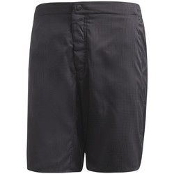 Vêtements Homme Shorts / Bermudas adidas Originals Short  Mountain Fly Allover Print Carbon Anthracite