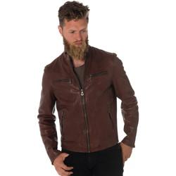Vêtements Homme Vestes en cuir / synthétiques Daytona 73 TRITON COW VEG BRANDY Cognac